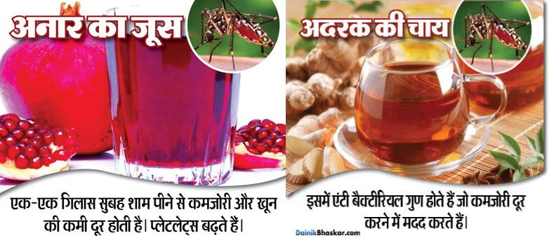 10-natural-food-for-prevent-from-dengu-and-chikanguniya11