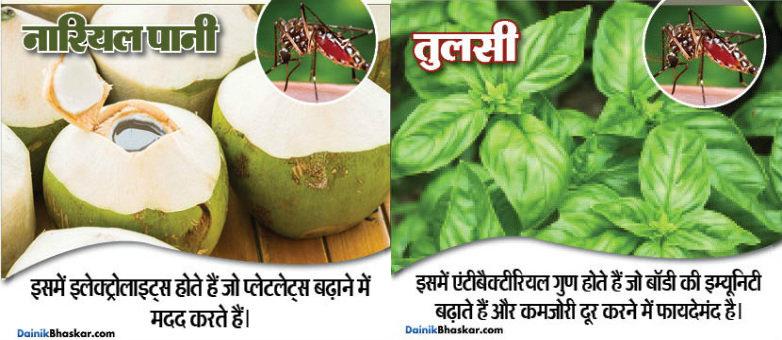 10-natural-food-for-prevent-from-dengu-and-chikanguniya13