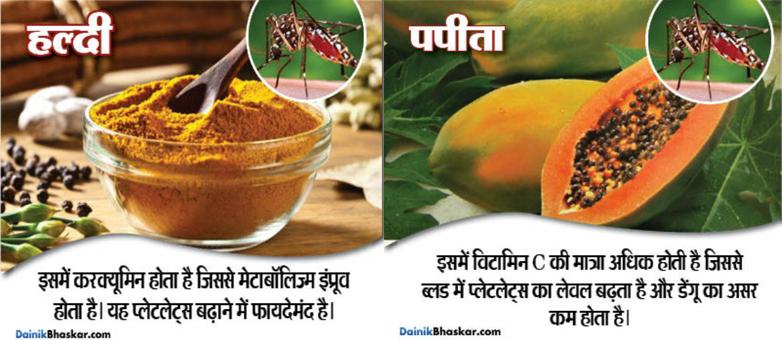 10-natural-food-for-prevent-from-dengu-and-chikanguniya15