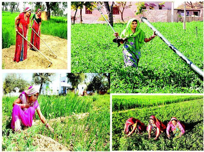 indian-educated-girls-grow-gold-from-farm featured