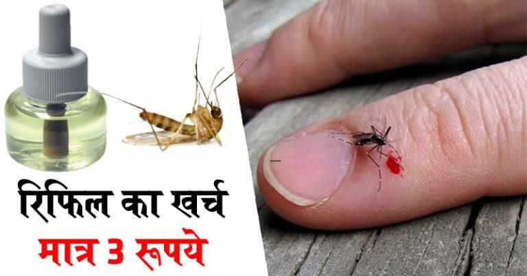 घर पर बनाएं मच्छर भगाने वाला लिक्विड, खर्च होंगे सिर्फ 3 रु